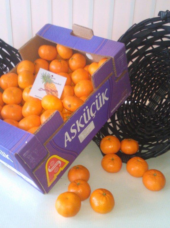 Horeca fruit